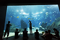 Portugal, Lisbon, Oceanario de Lisboa, visitors in front of aquarium - BI000147