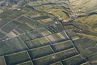 Turkey, Mugla, Ortaca, Field landscape, aerial photo - SIEF004770