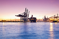 Germany, Hamburg, Parkhafen, harbour, Elbe, container ship - MSF003132