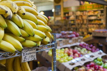 USA, California, San Francisco, Organic fruit and vegetable with bananas close up in a store - ABA001090