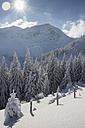 Germany, Bavaria, Sudelfeld, Mountains in winter, chairlift - FFF001385