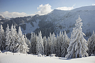 Germany, Bavaria, Sudelfeld, Mountains in winter - FFF001389