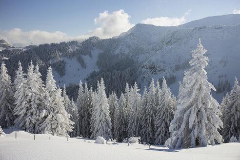 Germany, Bavaria, Sudelfeld, Mountains in winter - FFF001389