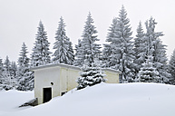 Germany, Thurinigia, Oberhof, Hut at the forest in winter - BR000006