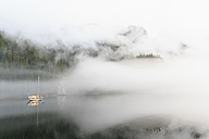 Canada, British Columbia, Khutzeymateen Valley, Khutzeymateen Provincial Park, fjord with fog - FO005417