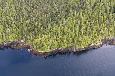 Canada, British Columbia, Khutzeymateen Provincial Park, Great Bear Rainforest, aerial view - FOF005430