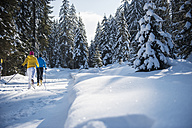Austria, Salzburg Country, Altenmarkt-Zauchensee, Young couple cross-country skiing - HHF004656