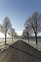 Germany, Baden-Wuerttemberg, Tuebingen, Einsiedel, avenue in winter in the morning - LVF000410