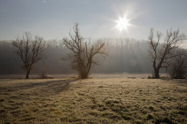 Germany, Baden-Wuerttemberg, Kirchentellinsfurt, quarry pond at sunrise - LVF000407