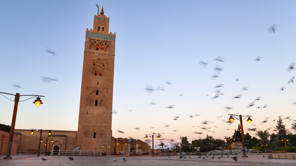 Morocco, Marrakech, view to Koutobiya Mosque at dawn - HSIF000313