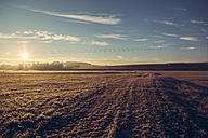 Germany, Bavaria, meadows and field covered with frost, morning sun - SARF000183
