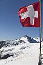 Switzerland, Bernese Oberland, Aletsch Glacier, Moutaineers at Jungfraujoch - WWF002933