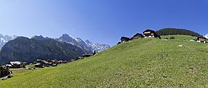 Switzerland, Jungfrau-Aletsch-Bietschhorn nature heritage site - WWF002940