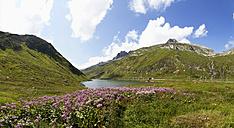 Switzerland, Grisons, Lake Oberalpsee and Oberalp Pass - WWF002972