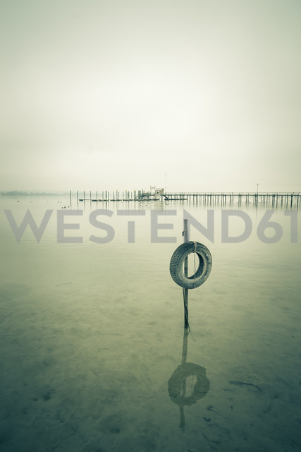 Germany, Baden-Wuerttemberg, Car tyre in water and jetty at Iznang - ELF000749 - Markus Keller/Westend61