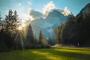 Italy, Trentino-Alto Adige, Alto Adige, Bolzano - MJF000447