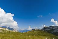 Italy, Province of Belluno, Veneto, Auronzo di Cadore, alpine meadow near Tre Cime di Lavaredo - MJ000459