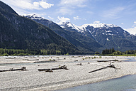 USA, Alaska, Hyder, Driftwood at Salmon River - FOF005448