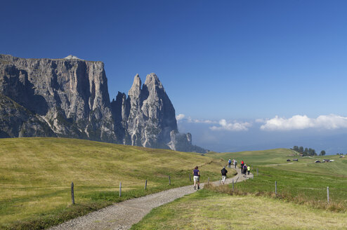 Italy, South Tyrol, Seiseralm and Schlern group - WW003063