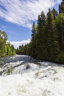 Canada, British Columbia, Wells Gray Provincial Park, Murtle River - FOF005467
