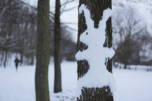 Rabbit made of snow at tree trunk - JATF000527