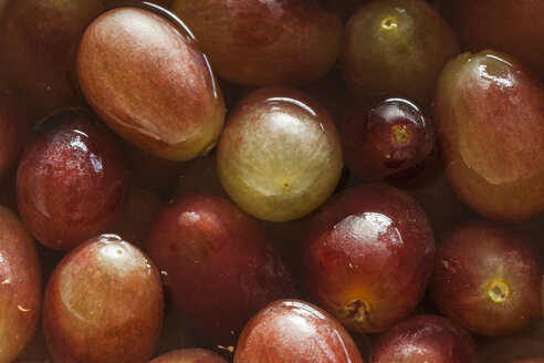 Grapes in water, close up - HAF000242