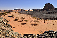 Algeria, Sahara, Tassili N'Ajjer National Park, group of tourists resting in a dry rocky valley - ES000935