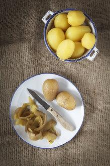 Boiled potatoes, studio shot - EVGF000323