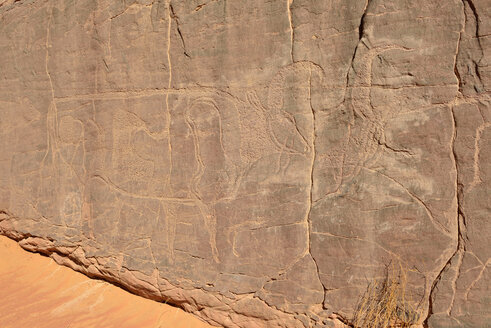 North Africa, Sahara, Algeria, Tassili N'Ajjer National Park, Tadrart, neolithic rock art, rock engraving of cows and bulls - ES000941