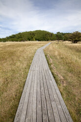 Germany, Mecklenburg-Western Pomerania, Ruegen, Kreptitzer Heide Nature Reserve, wooden boardwalk - WIF000296