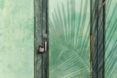 Spain, Canary Islands, La Palma, Green wooden door with padlock and shadow of a palm leaf - SIE004967