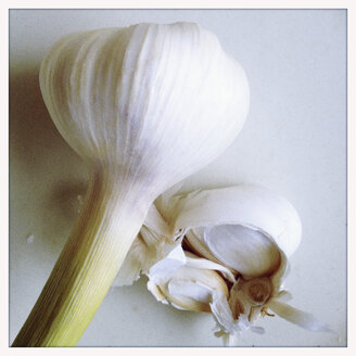 Fresh garlic, Hamburg, Germany - SEF000381