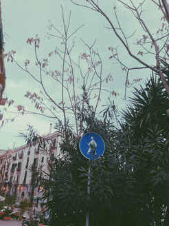 Walking sign in a bush, Palermo, Sicily, Italy - MEAF000095