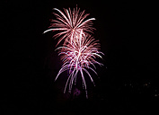 Pink and white fireworks at black sky - SLF000244