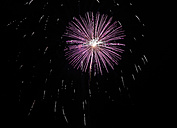 Pink and white fireworks at black sky - SLF000242