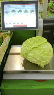 Wirsing on scales at the grocery store, Bavaria, Germany - MAE007609