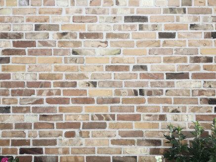 Brick wall, Hamburg Germany - SEF000448
