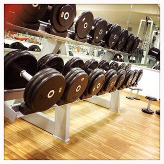 Dumbbells in the gym - DHL000307
