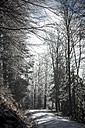 Germany, Bavaria, Bodenmais, Path through winterly forest - SBDF000449