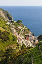Italy, Cinque Terre, View of Riomaggiore - AMF001621
