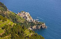 Italy, Cinque Terre, View of Manarola - AMF001622