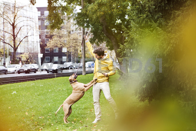 Young man playing with his dog on grass verge - FEXF000070