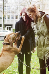 Two women with dog - FEXF000058