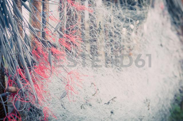 Germany, Mecklenburg-Western Pomerania, Ruegen, Fishing net in winter - MJF000553