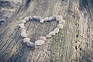 Stones forming heart on tree trunk - MJF000567