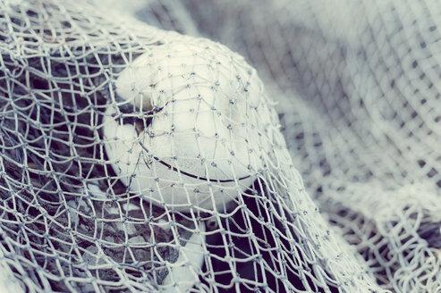 Germany, Mecklenburg-Western Pomerania, Ruegen, Fishing net in winter - MJF000685