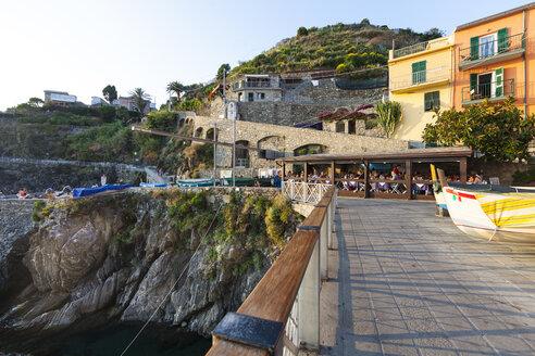 Italy, Liguria, Cinque Terre, Manarola - AMF001683