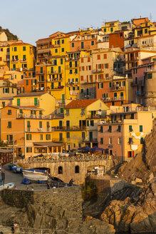 Italy, Liguria, Cinque Terre, Manarola - AMF001694