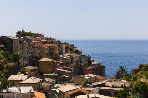 Italy, Liguria, Cinque Terre, Manarola - AMF001719