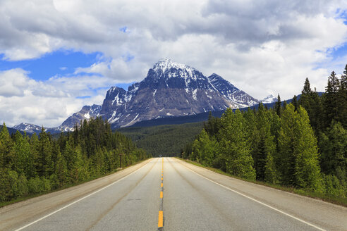 Canada, British Columbia, Rocky Mountains, road through Mount Robson Provincial Park - FOF005635